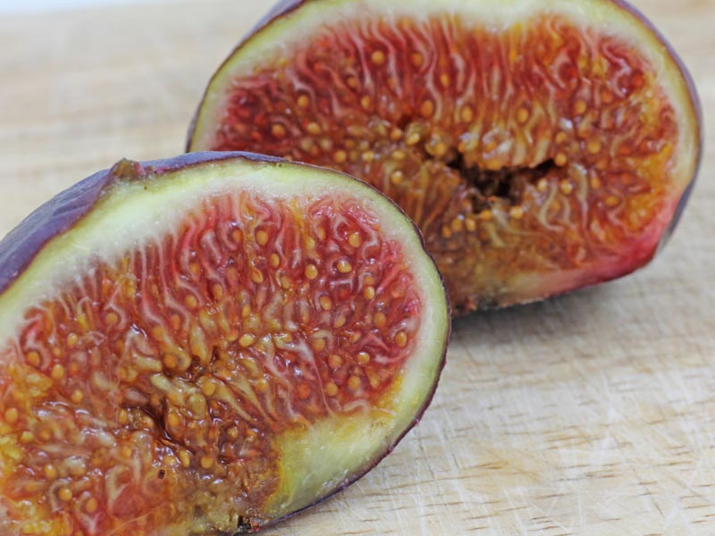 cutted Fig
